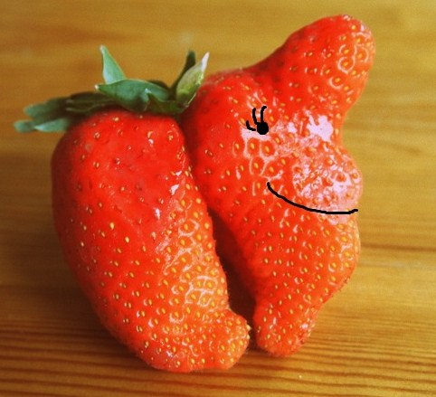 Strange Strawberries